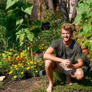 Garden Actions